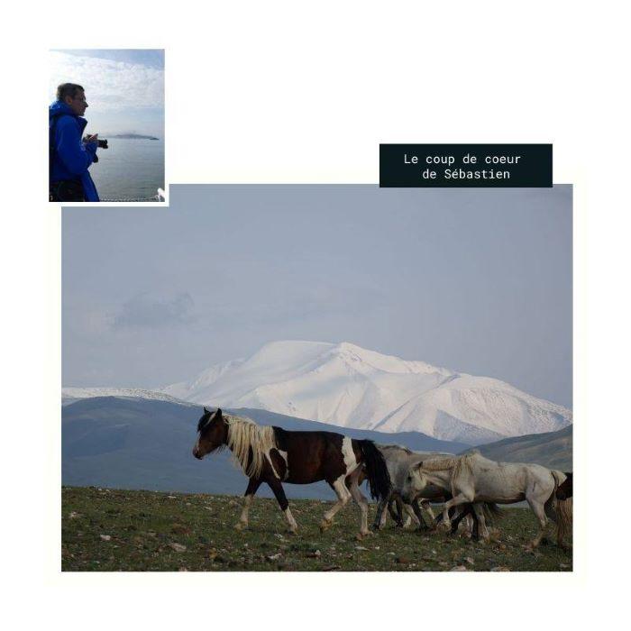 Le coup de coeur de Sébastien : les grands espaces de l'Altaï mongol. Photo : Sébastien de Nord Espaces