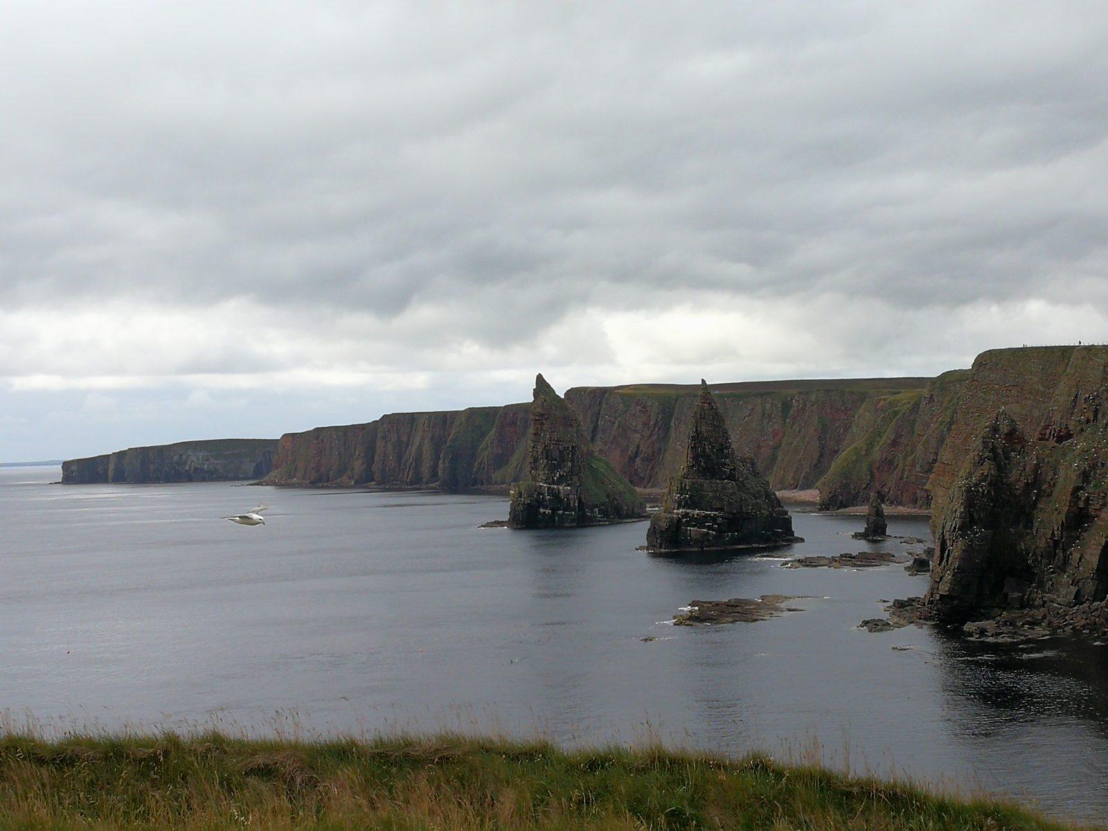 Falaises du Pentland Firth, Ecosse