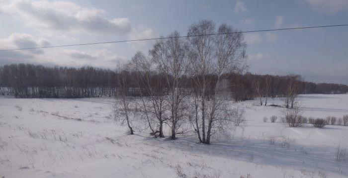 Par la fenêtre du Transsibérien. Photo : Nord Espaces