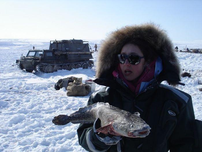 Congélation expresse de la pêche du jour. Photo : Julia de Nord Espaces