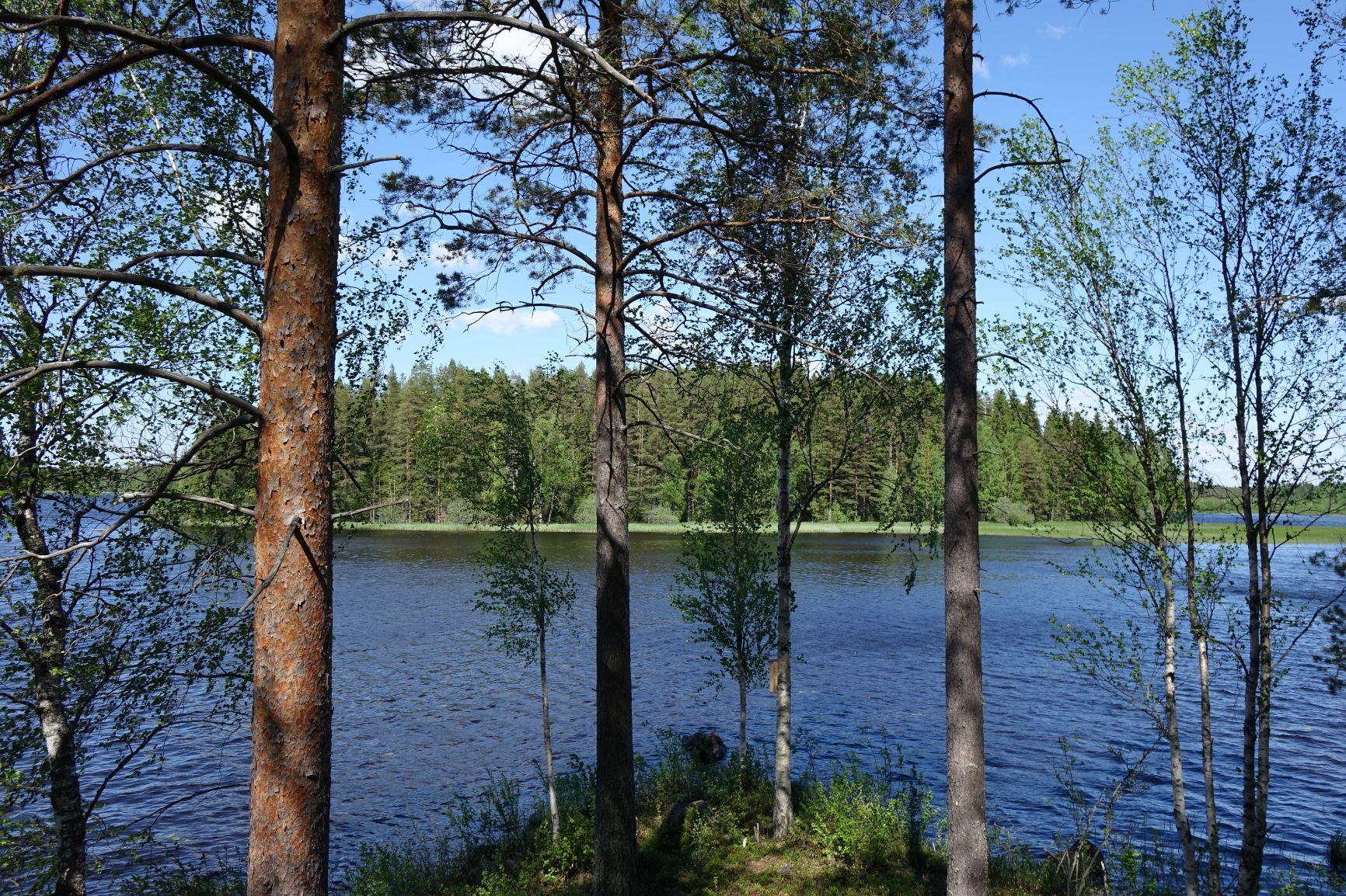 Une île lacustre et boisée en Finlande. Photo : Sébastien de Nord Espaces