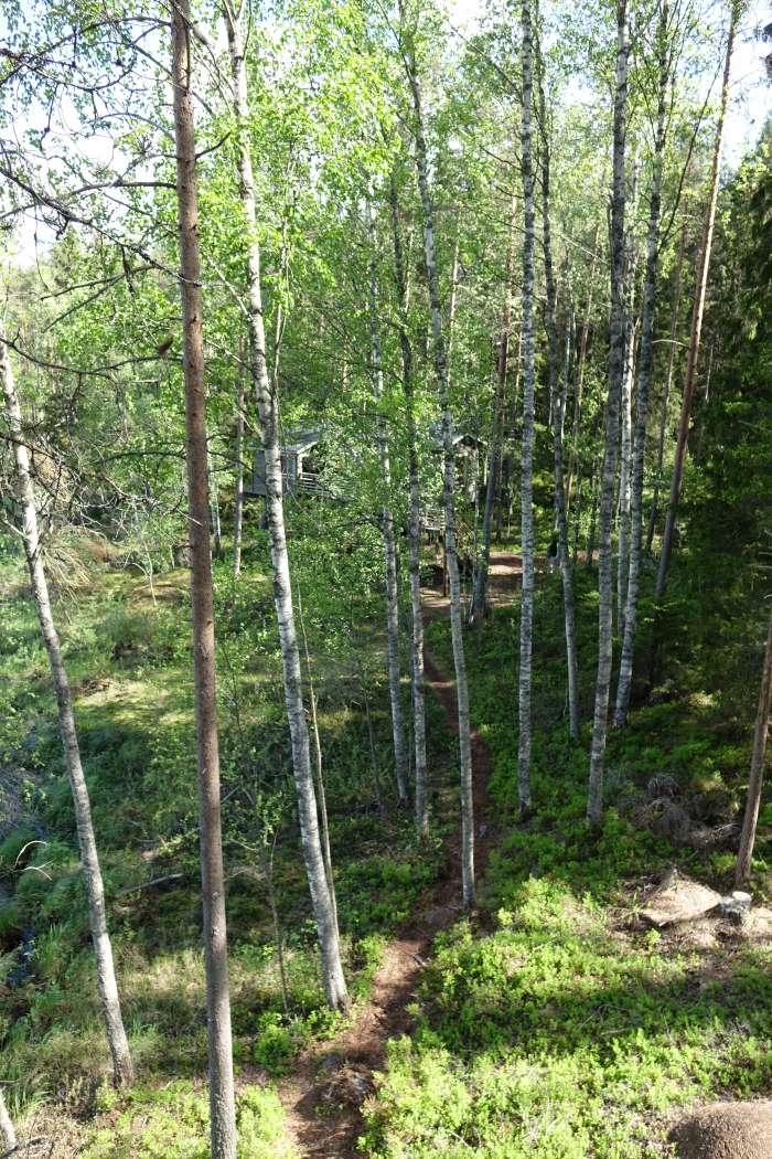 Un hôtel dans la forêt boréale. Photo : Sébastien de Nord Espaces