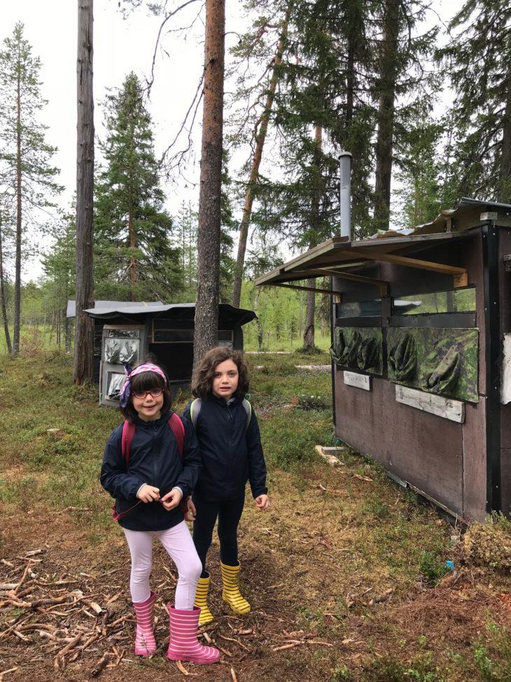 Affûts à Kuhmo, Carélie finlandaise