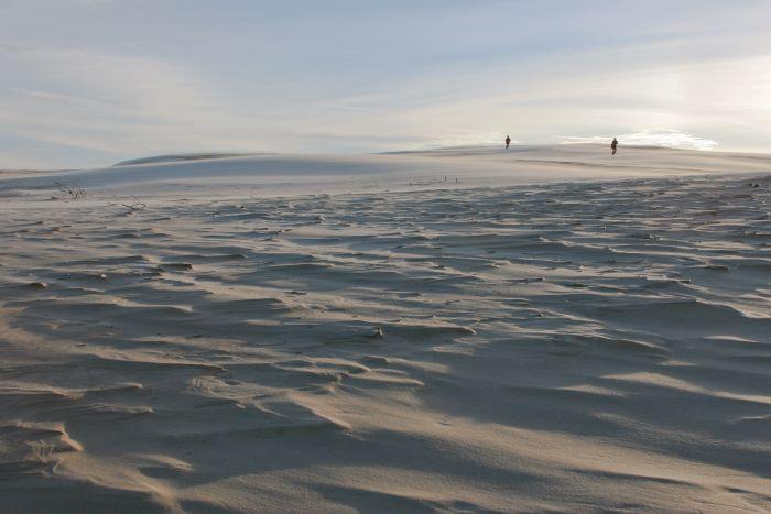 La dune de Råbjerg Mile par Heje