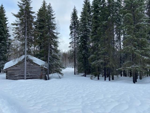Famille M., Finlande, février 2020