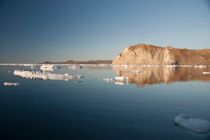 L'île Wrangel en Tchoukotka. Photo : André de Nord Espaces
