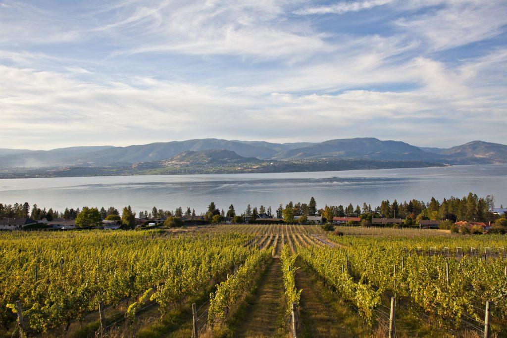 Route des vins de la vallée de l'Okhanagan, Colombie-Britannique, Canada - Nord Espaces