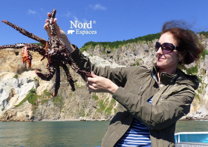 Crabe royal du Kamtchatka en été