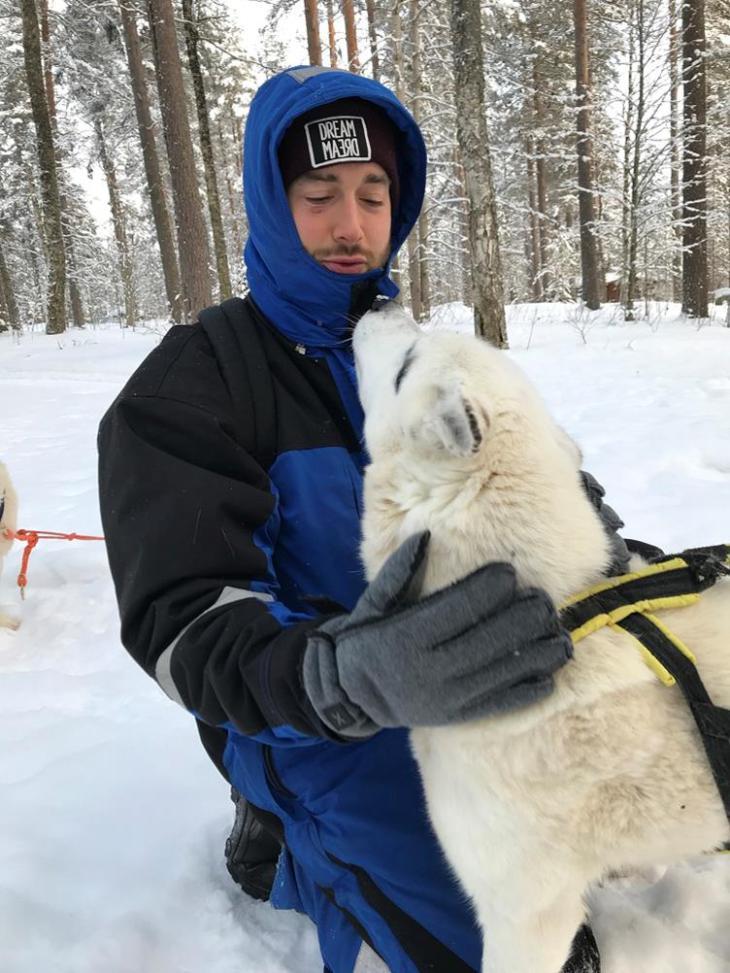 Traîneau à chiens à Kuhmo, Finlande