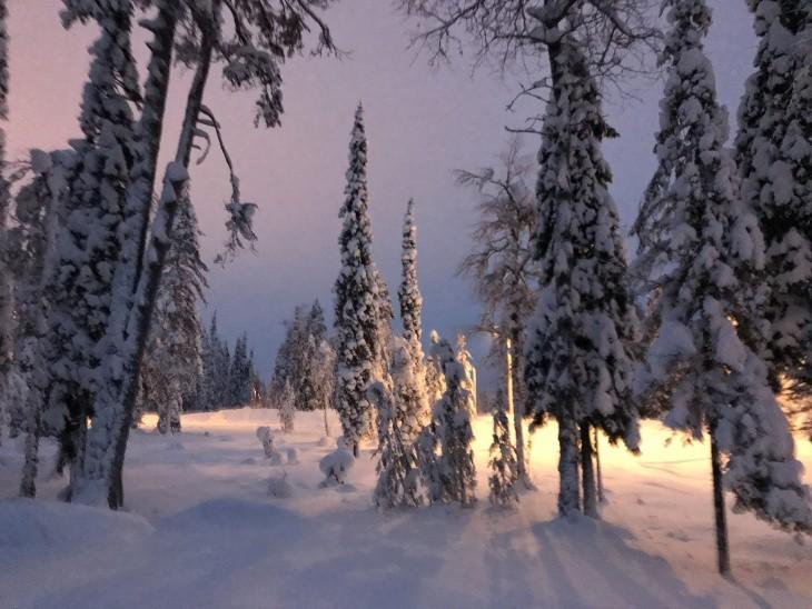 L'hiver en Laponie finlandaise