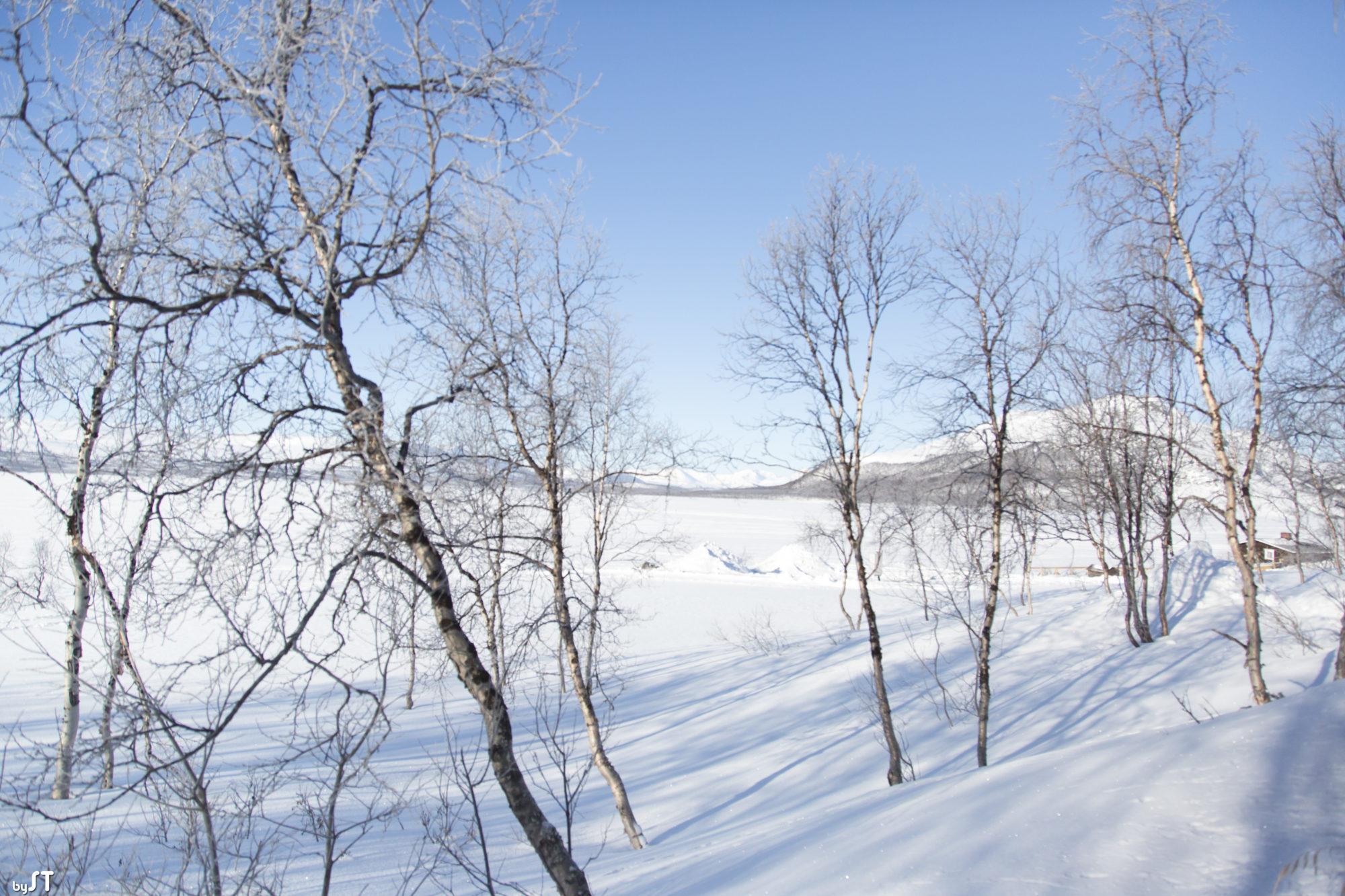 Environs de Kilpisjärvi en Finlande