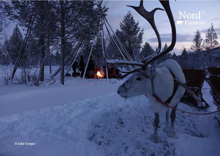Un traîneau à renne en Laponie. Photo : Julia de Nord Espaces
