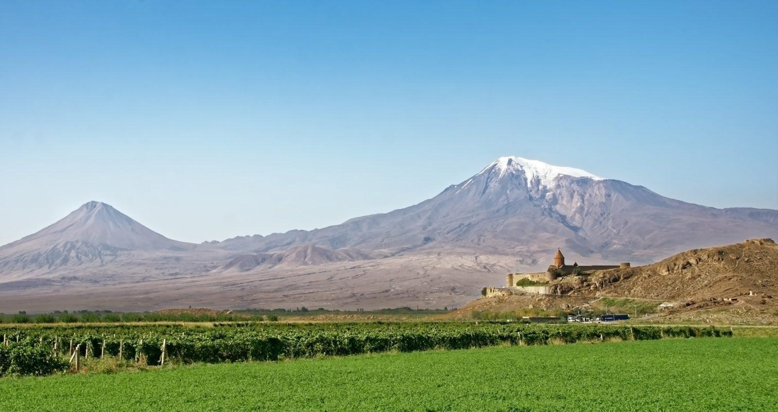 Vignes d'Arménie