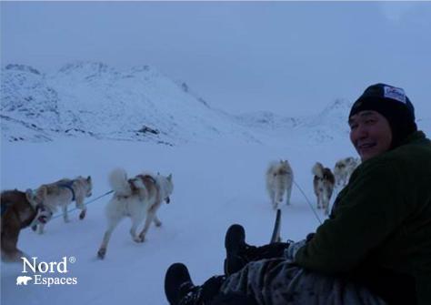 Traîneau à chiens au Groenland - Nord Espaces