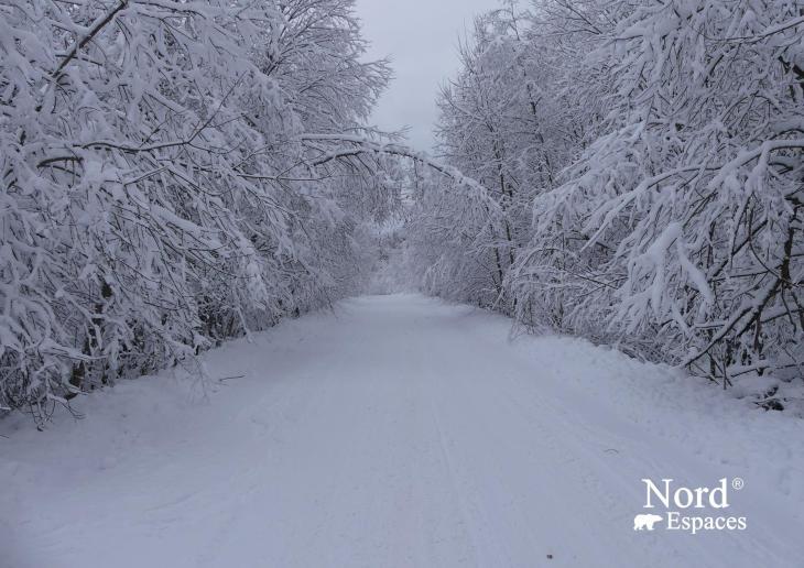 Magnifique hiver en Russie