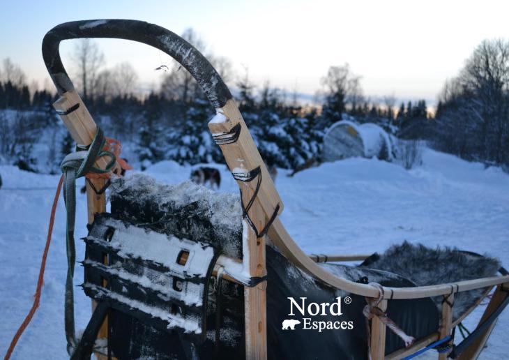Traîneau à chiens en Russie profonde - Nord Espaces