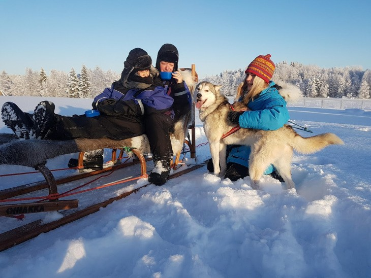 Traîneau à chiens en Laponie suédoise - Nord Espaces